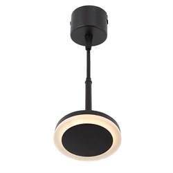 Подвесной светодиодный светильник Denkirs DK4022-BK