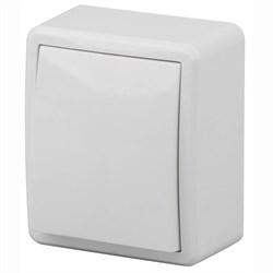 Выключатель одноклавишный с подсветкой ЭРА Эксперт 10AX 250V 11-1202-01 Б0020657