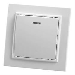 Выключатель одноклавишный Feron Stekker Эрна с подсветкой PSW10900101 39041
