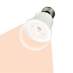 Лампа светодиодная для растений (UL-00001820) Uniel E27 10W прозрачная LED-A60-10W/SPFR/E27/CL PLP01WH