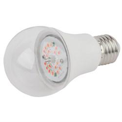 Лампа светодиодная для растений ЭРА E27 10W 1310K прозрачная FITO-10W-RB-E27-K Б0039069
