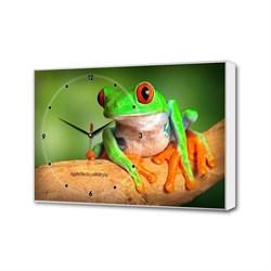 Настенные часы Зеленная лягушка Timebox Toplight 37х60х4см TL-C5023