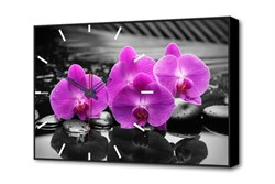 Настенные часы Магия Орхидей Timebox Toplight 37х60х4см TL-C5017