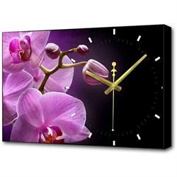 Настенные часы Toplight 37х60х4см TL-C5042