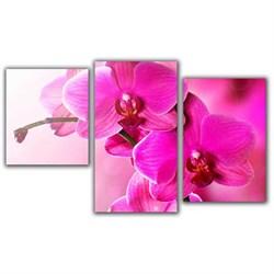 Мини модульная картина Розовый пестик Toplight 55х94см TL-MM1039