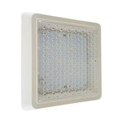 Настенно-потолочный светодиодный светильник Kink Light Сигма 08583