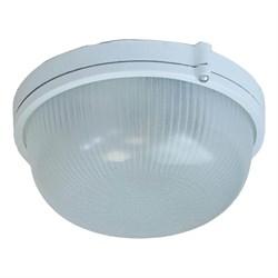 Настенно-потолочный светильник ЭРА Акватермо НБП 03-60-001 Б0048419