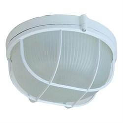 Настенно-потолочный светильник ЭРА Акватермо НБП 03-60-002 Б0048421