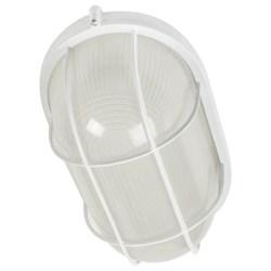 Настенно-потолочный светильник ЭРА Акватермо НБП 04-60-002 Б0048425