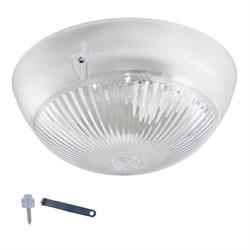 Настенно-потолочный светильник ЭРА Сириус НБП 06-60-011 Б0048409