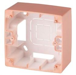 Коробка для накладного монтажа 1-постовая ЭРА 12 12-6101-14 Б0043168